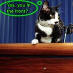 """FOR ONE TIME USE, ONLY IN CONNECTION WITH THE AP BOOK """"FIRST PET"""" -- Socks the cat peers over the podium in the White House briefing room Saturday March 19, 1994.  A White House groundskeeper was walking Socks when he stopped and lifted Socks to the podium.  (AP Photo/Marcy Nighswander)"""